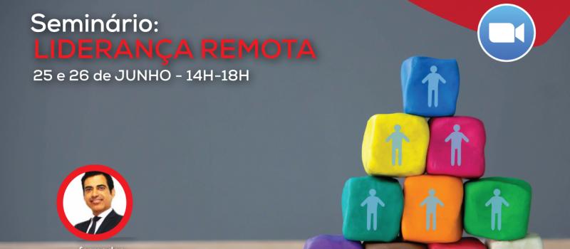 liderana-remota_zoom_site